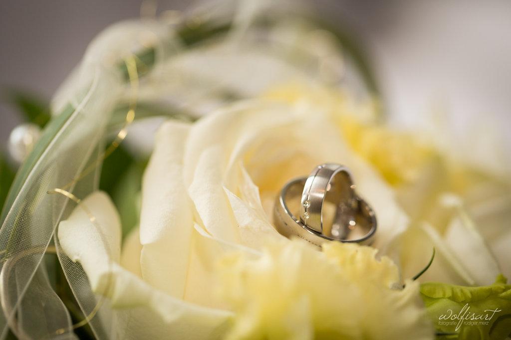 Hochzeit-SabrinaAlex-0201.jpg